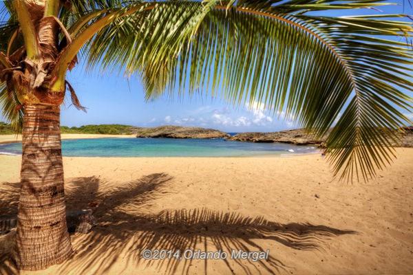mar-chiquita-beach-manati-puerto-rico-orlando-mergal-600px-2014-0042