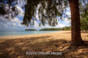 Cerro Gordo Beach, Balneario de Cerro Gordo en Vega Baja, Puerto Rico